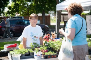 Eileen of Hope's Treasure Chest has lots of plant starts