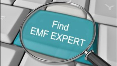 Photo of Put the EMF Professional Directory to Work for You!