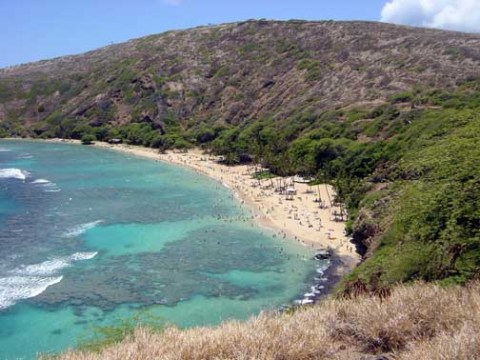 Hanauma Bay is a snorkeler's paradise.