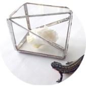 クールに決めたい!ステンドグラステラリウムの作り方