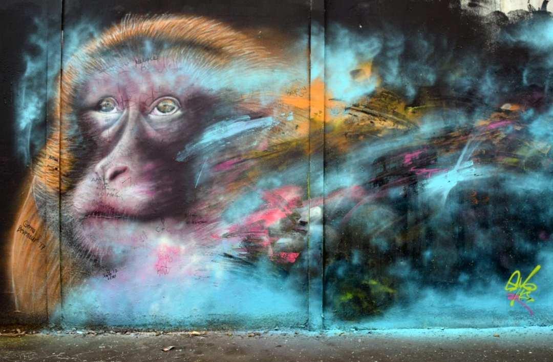 Peace wall, Belfast