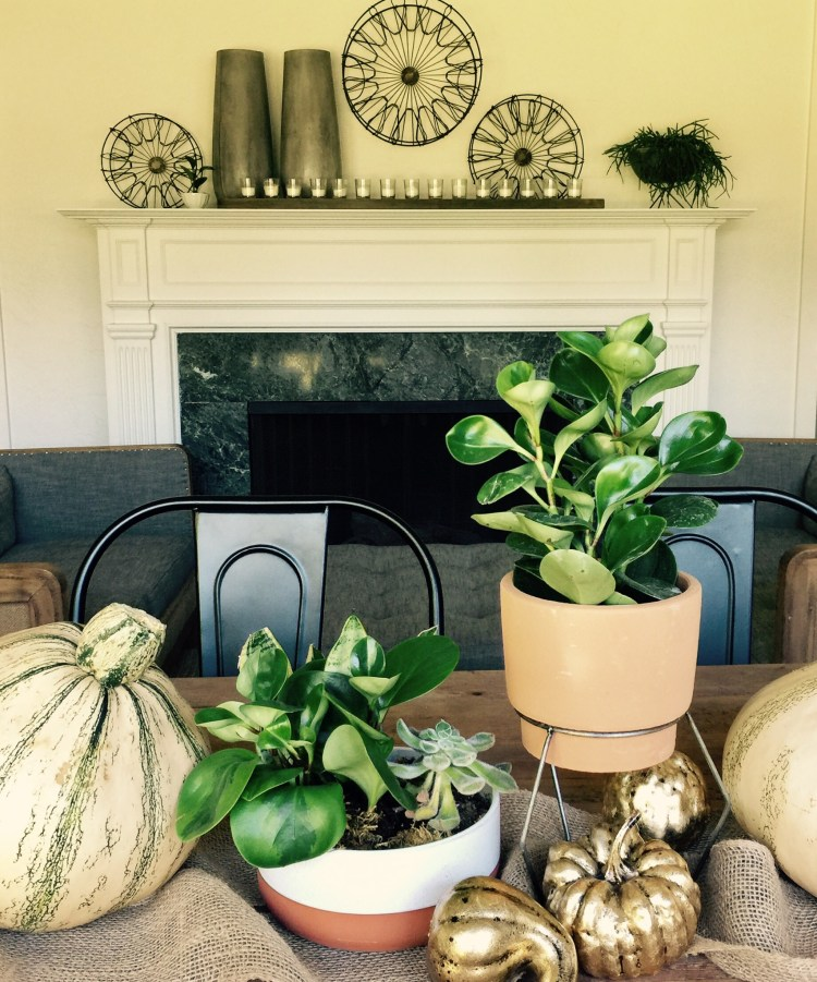 Tablescape with mantle