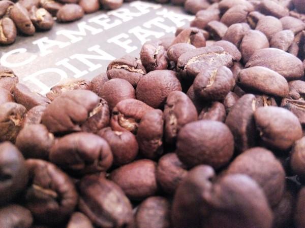 CAFEA ETIOPIA MOKA SIDAMO