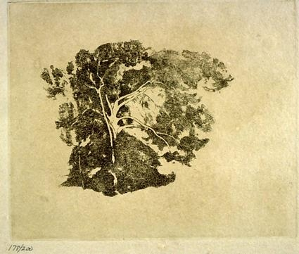 Emil Carlsen Tree Study, printed 1978 from plates executed by Emil Carlsen