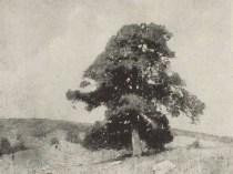 Emil Carlsen The sentinel pine, 1907.