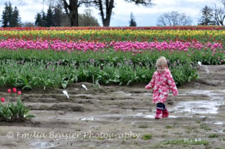 Puddle jumping 1