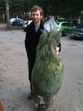 Nial with the tree