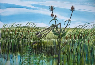 Thistle Painting, watercolor on paper, 40 by 48 in. Emilia Kallock 2008