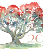 pohutukawa, watercolor, card, new year, eve, Emilie Geant, illustration,, new zealand