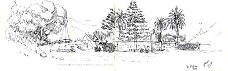 te auroha, mahia peninsula, beach, Emilie Geant, illustration, sketch, new zealand