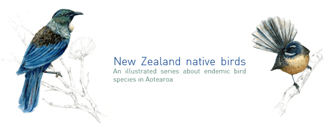 new zealand native bird species endemic