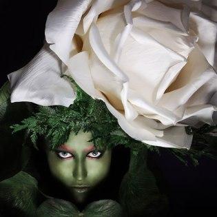 Flower 1 2