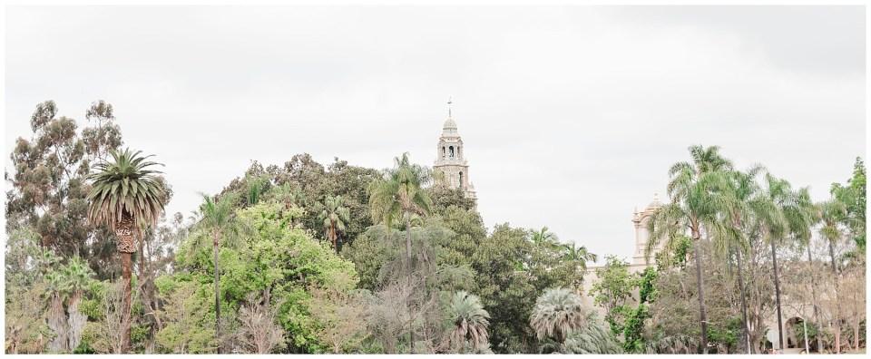 San_Diego_Destination_Wedding_Engagement_Photographer-Photo-13.jpg