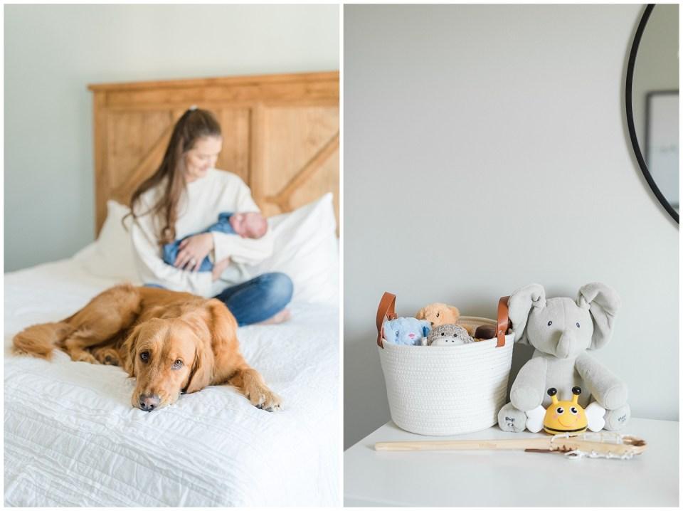 lifestyle-newborn-photo-dog-with-baby