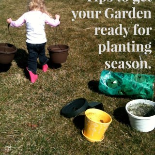 Gardening Plans: Early Season Organizing