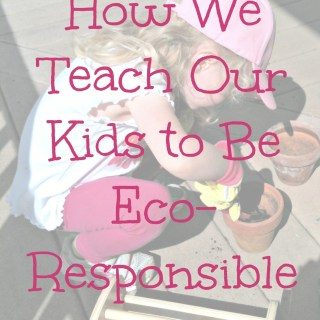 Teaching Young Children to be Eco-Responsible
