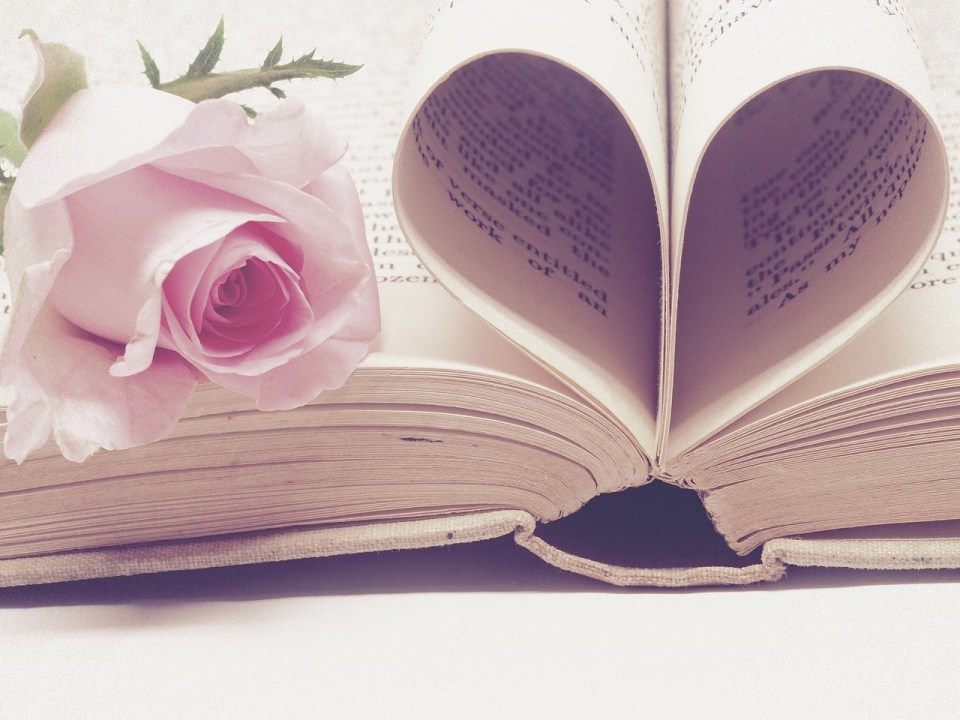 an open book with the pages folded into a heart, with a pink rose