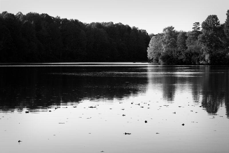 Lake Hollymead