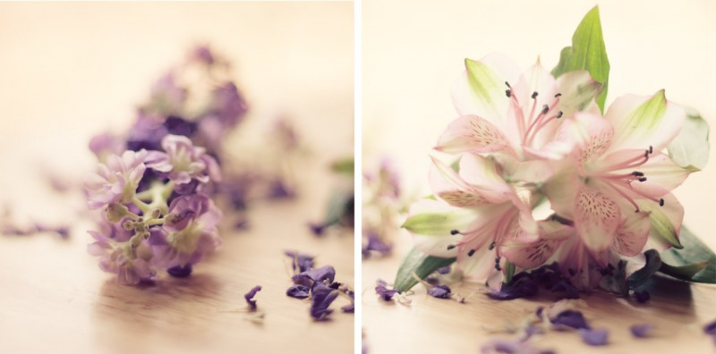 Diptych with pink and purple flowers