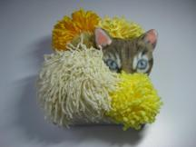 """SOLD! Pom Pom Cat - 6"""" x 6"""", yarn and fabric on canvas, 2011"""
