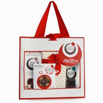 flob8173-christmas-gift-bag
