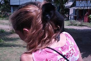 Monkey on Emily's shoulders