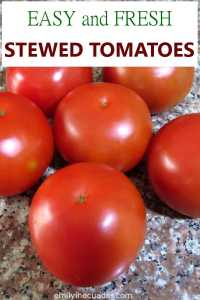 Easy and Fresh Stewed Tomatoes Pinterest