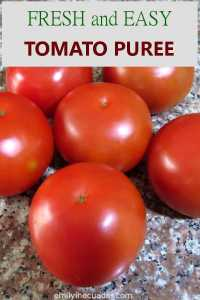 Easy and Fresh Tomato Puree