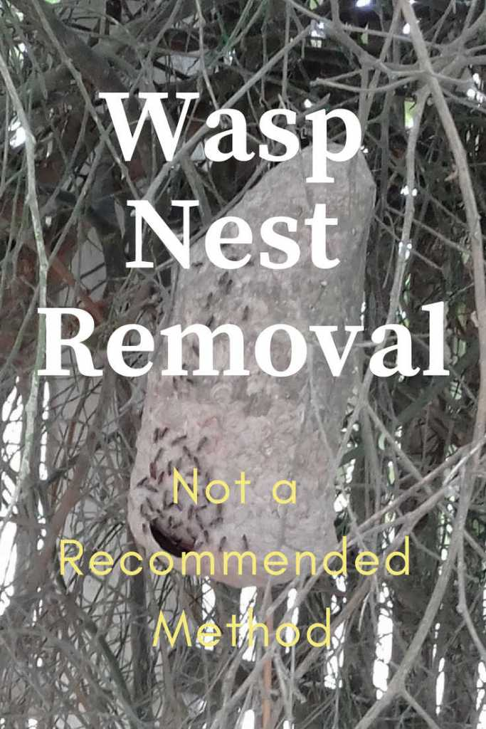 Wasp Nest Removal - Not a recommended method