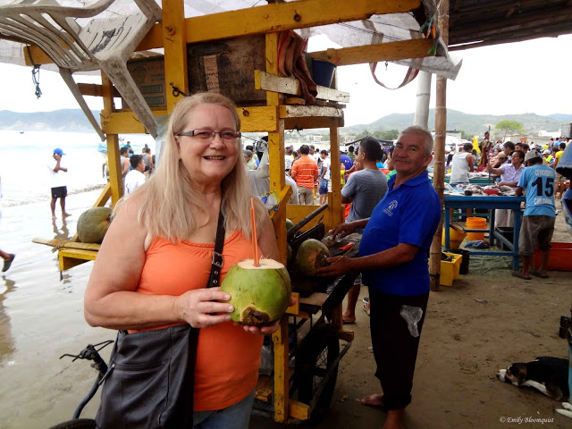 Coconut at Puerto Lopez fish market