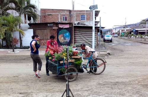 Plant delivery tricycle in Puerto Lopez