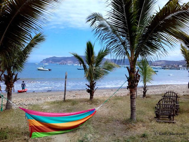 Hammock between palms on beach