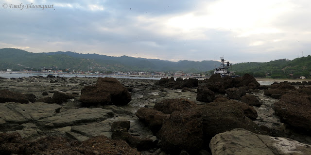 Rocks exposed by low tide