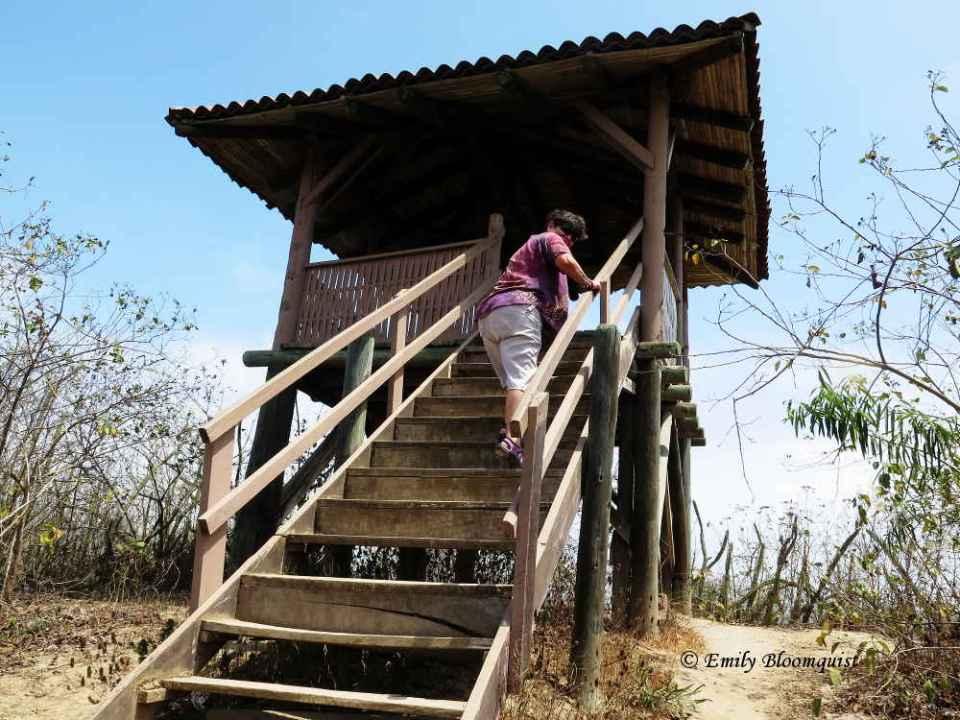 Platform at Los Frailes lookout
