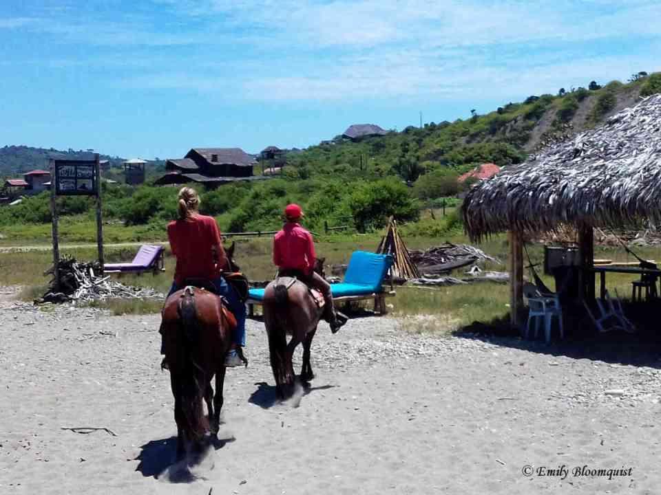 Tsafiki return after horseback ride