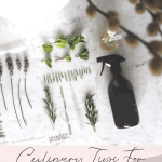 Culinary Tips for Cooking with Hemp Oil Extracts