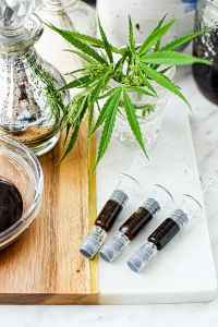 How to Make Full Extract Cannabis Oil (FECO)
