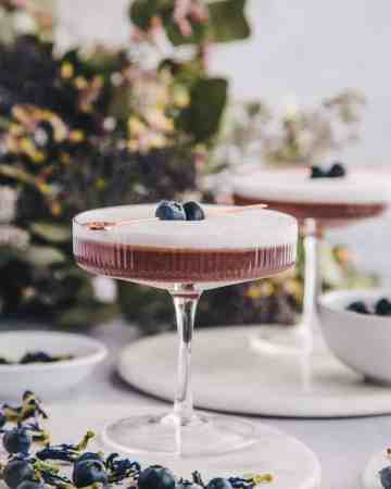 Blueberry & Black Currant Cocktail