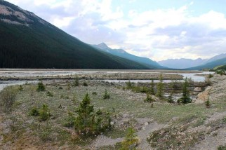 Alaska Travel AlCan Highway 02