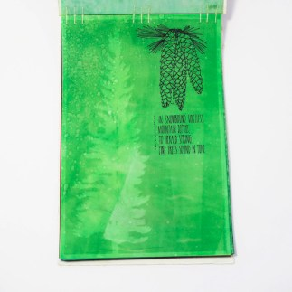 Fifty Trees artist book by Emily Longbrake 07