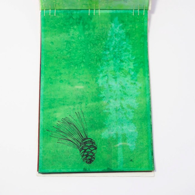 Fifty Trees artist book by Emily Longbrake 08