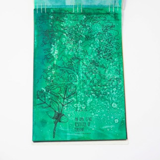Fifty Trees artist book by Emily Longbrake 14