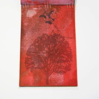 Fifty Trees artist book by Emily Longbrake 26