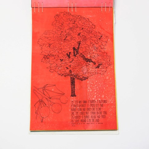 Fifty Trees artist book by Emily Longbrake 31