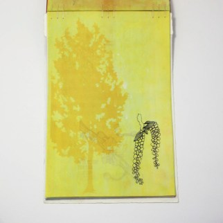 Fifty Trees artist book by Emily Longbrake 38