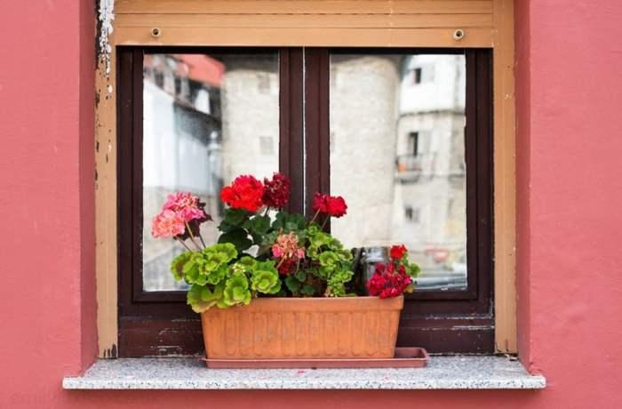 Meeting Locals in Asturias