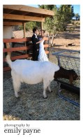 Kerry and Mike's Wedding at Animal Acres!