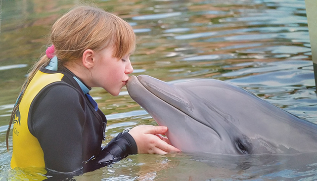 Kissing a dolphin at Discovery Cove Orlando