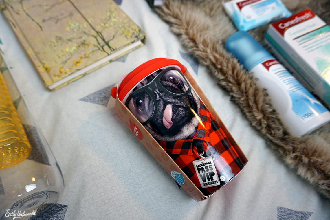 pug-mug