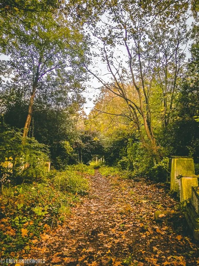 Tower Hamlets Cemetery Park in Autumn.